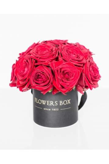 Bordo rožės gėlių dėžutėje