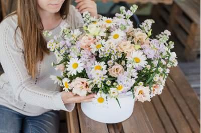Ramunių kompozicija gėlių dėžutėje