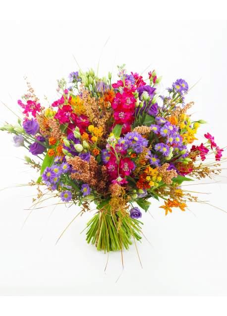 Ryški lauko gėlių puokštė