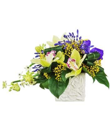 Gėlių kompozicija su orchidėjomis keramikiniame indelyje