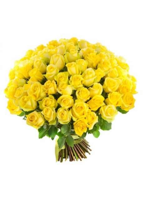 100 geltonų rožių puokštė