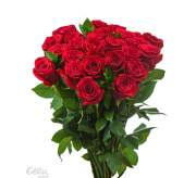 Rožės (spalvą pasirinkti užsakymo formoje)