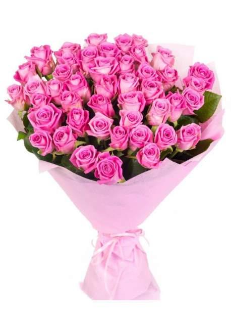 50 rožinių rožių puokštė