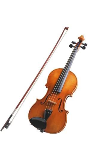 Gėlių pristatymas su smuiko muzika